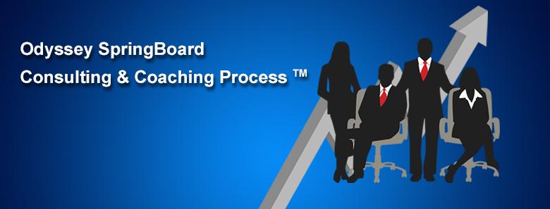 PDF cover Springboard Process