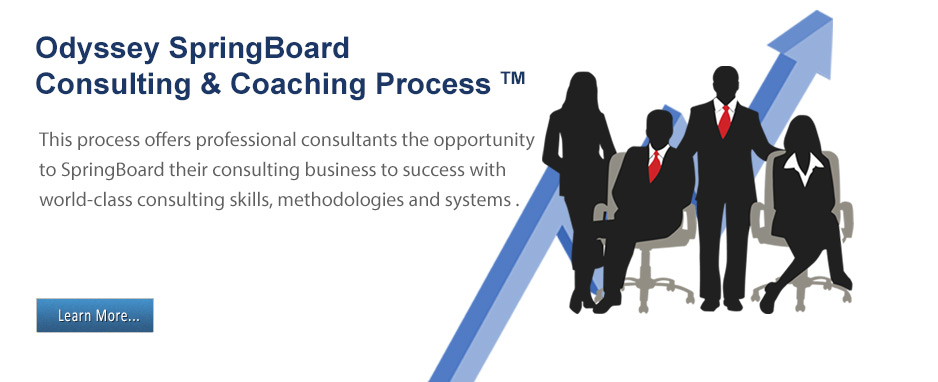 SpringBoard Consulting & Coaching Process